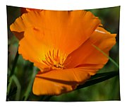 California Poppy Tapestry