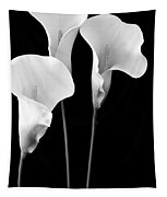 Calla Lilies In Triplicate In Black And White Tapestry