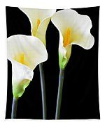 Calla Lilies In Triplicate Tapestry