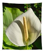 Calla Lily Tapestry