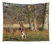 Calling Card Tapestry