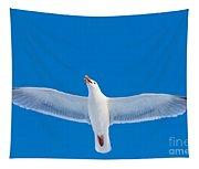 Calling Herring Gull Flying In Blue Sky Tapestry