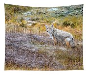 Camo Coyote Tapestry