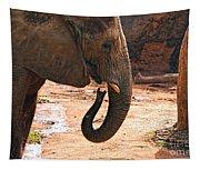 Camouflaged Elephant Tapestry
