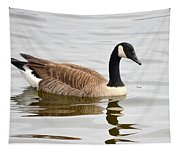 Canada Goose Reflecting In Calm Waters Tapestry