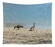 Canadian Geese 2 Tapestry