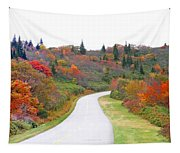 Candy Land On The Blueridge Parkway Tapestry