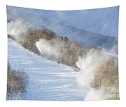 Cannon Mountain Ski Area - Franconia Notch State Park New Hampshire Tapestry