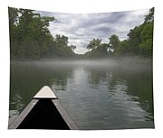 Canoeing The Ozarks Tapestry