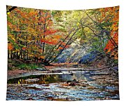Canopy Of Color Iv Tapestry