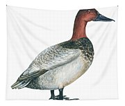 Canvasback Duck  Tapestry