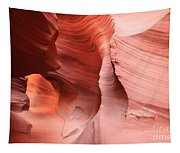 Canyon Angel Tapestry