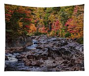Canyon Color Rushing Waters Tapestry