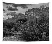 Canyon Del Oro No.48 Tapestry