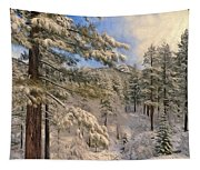 Lifting Cloud Tapestry
