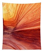 Canyon Kissed By The Sun Tapestry