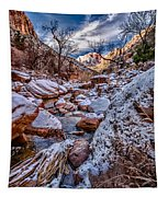 Canyon Stream Winterized Tapestry