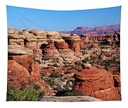 Canyonlands National Park Tapestry