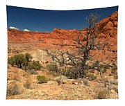 Capitol Reef Cliffs Tapestry