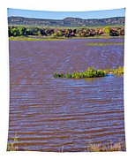 Caprock Canyon-lake Scenic Tapestry