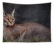 Caracal Tapestry