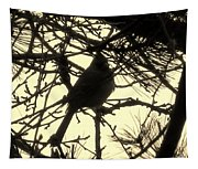Cardinal Contour Tapestry