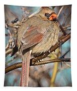 Cardinal Female Tapestry