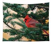 Cardinal In Balsam Tapestry