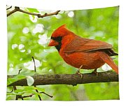 Cardinal In Red Tapestry