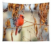 Cardinal In The Pokeberries Tapestry