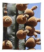 Cardon Cactus Fruit Tapestry