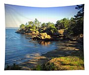 Carmel Meadows Beach At Point Lobos Tapestry