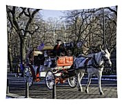 Carriage Driver - Central Park - Nyc Tapestry