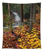 Cascade Creek  Autumn Tapestry