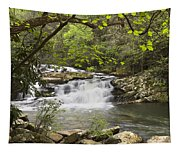 Cascades At Coker Creek Tapestry