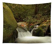 Cascades In Appalachian Mountains Tapestry