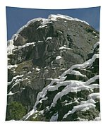 104619-castle Rock In Winter Dress Tapestry