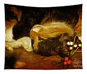 Cat Catnapping Tapestry