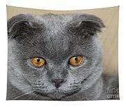 Cat Martin Tapestry