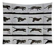 Cat Running Tapestry
