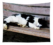 Cat Sleeping On Bench Tapestry