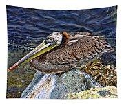 Catalina Pelican Tapestry