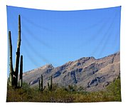 Catalinas Tapestry