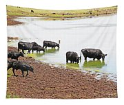 Cattle At Big Lake Arizona Tapestry