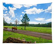 Cattles Roaming Through Hawley Lake Arizona Tapestry