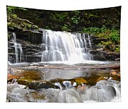 Cayuga Falls Tapestry