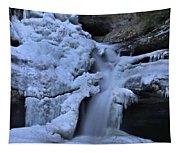 Cedar Falls In Winter At Hocking Hills Tapestry