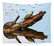 Happy Family Of Turtles Tapestry