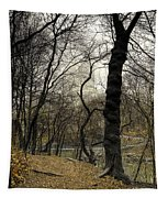 Central Park Rainy Day Number Three Tapestry
