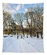 Central Park Snow Storm One Day Later2 Tapestry